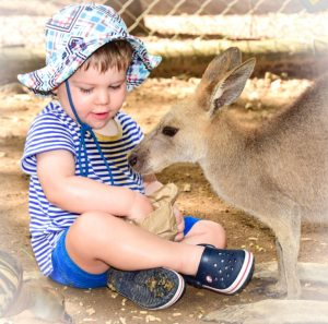 Cooper Makes A New Friend In The Kangaroo Corral
